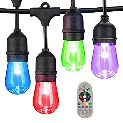 SMART EGG 48FT Color Changing Outdoor String Li...