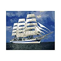 sesemaoの有名な油絵の複製、抽象的な色の壁画、吊り下げられた絵画、防水性の高い キャンバスの白い帆船-額装_50X50cm