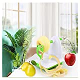 WDNMDDE Mela Sbucciatori e tagliafrutta,Pelapatate in Acciaio Inox pelapatate,Sbuccia Mele,Cutter Apple Potato Fruit Machine Pelapatate Peeling Slicer Utensile da Cucina