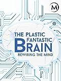 The Plastic Fantastic Brain