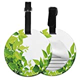 Round Travel Luggage Tags,Beautiful Photo of Fresh Leaves Spring Season Birth of Nature Happiness Ecology,Leather Baggage Tag