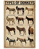 Signos de conocimiento, Vintage Tin Signs Beer Knowledge of The Types of Donkeys Metal Sign, Vintage Wall Art, Home Decoration Sign Anniversary Birthday Personalized Tin Sign