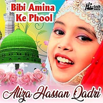 Bibi Amina Ke Phool