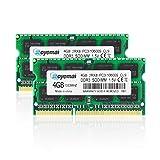 DUOMEIQI 8GB (4GBx2) PC3-10600 D...