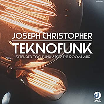 Teknofunk (Extended Too Funky for the Room Mix)