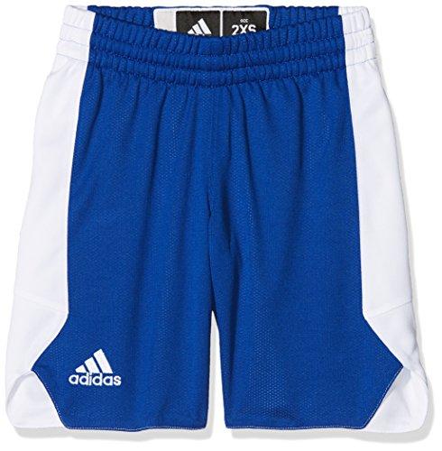 adidas Y Rev Crzy Ex S, Pantalone Bambino, Blu (Reauni/Bianco)), 164