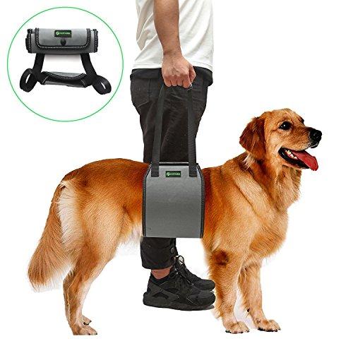 RockPet Hunde Hilfsmittel, von Tierärzten genehmigte Hebebühne für Rehabilitation (S,Grau)