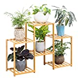 Bamboo 6 Tier Plant Stand