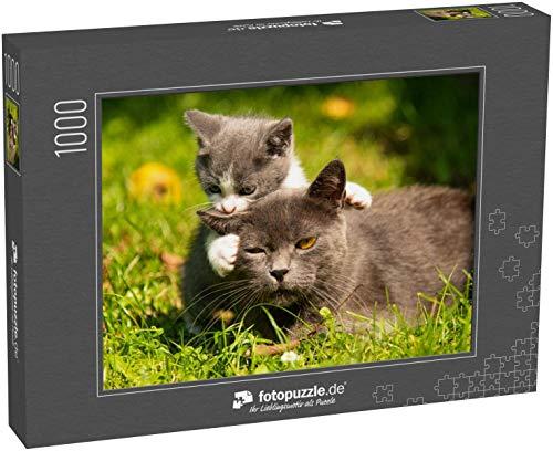 fotopuzzle.de Puzzle 1000 Teile Kätzchen Mutter Katzenküsse Die Katze umarmt das Kätzchen und drückt Sein Gesicht auf das Kätzchen (1000, 200 oder 2000 Teile)