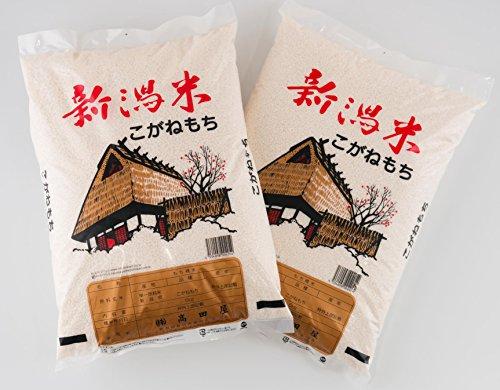 令和2年産 もち米 特別栽培米 新潟産 精白米 こがねもち 5kg (10kg(5kg×2))