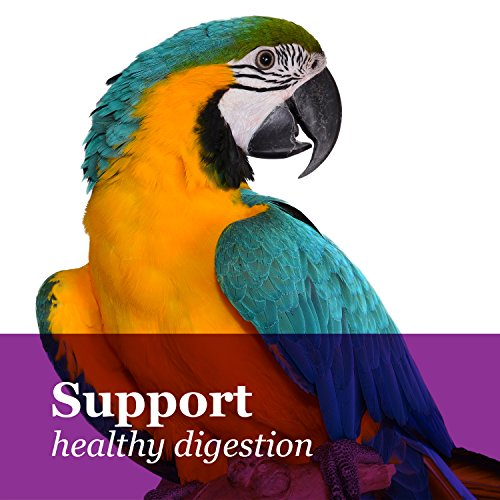 F.M. Brown'S Tropical Carnival Gourmet Macaw Food Big Bites For Big Beaks - Vitamin-Nutrient Fortified Daily Diet With Probiotics For Digestive Health