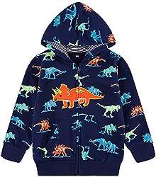 5. Akyzic Cartoon Pullover Toddler Dinosaur Hoodie