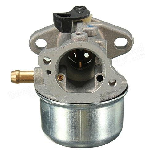 Carburador Raitron para Briggs & Stratton 799868 498254 497347 497314 498170 497586