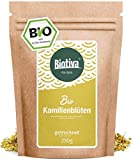 Kamillen-Blüten Tee Bio 250g - Hochwertigste ganze Bio-Kamillenblüten - Bio-Kamillen-Tee - Abgefüllt und kontrolliert in Deutschland (DE-ÖKO-005)