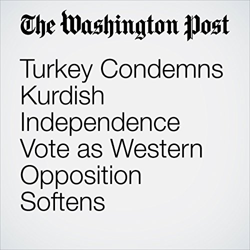 Turkey Condemns Kurdish Independence Vote as Western Opposition Softens copertina