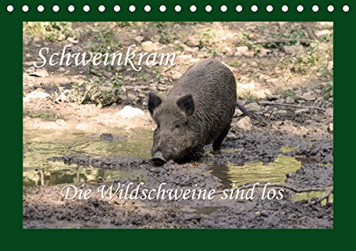 Schweinkram - Die Wildschweine sind los (Tischkalender 2021 DIN A5 quer)