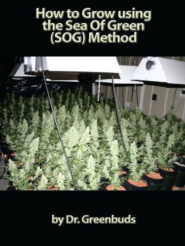 How to Grow using the Sea Of Green (SOG) Method: Start growing like the pros today (English Edition)