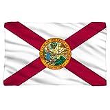 Tilted Tees Florida State Flag - Fleece Throw Blanket (36'x58')