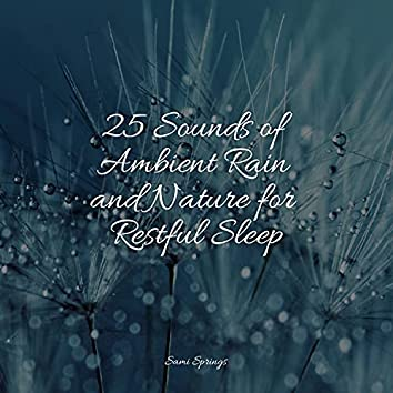 25 Sounds of Ambient Rain and Nature for Restful Sleep