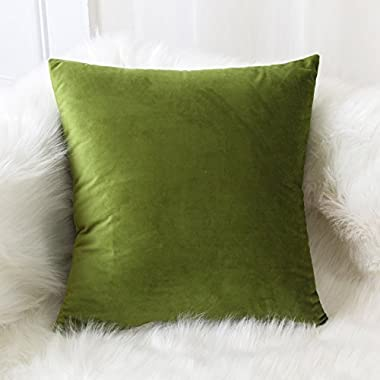 SLOW COW Velvet Throw Pillow Cover, Decorative Cushion Cover 18x18 Inches, Green.