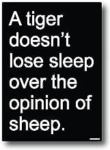 Nourish A Tiger Doesn't Loose Sleep