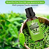 Zoom IMG-2 tea tree oil olio puro