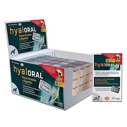 Hyaloral para Perros de Razas Grandes y Gigantes 360 Comp | Suplemento Nutricional para el Dolor de Caderas, Articulaciones y Cartílagos | Complemento Vitamínico para Fortalecer Tendones y Ligamentos