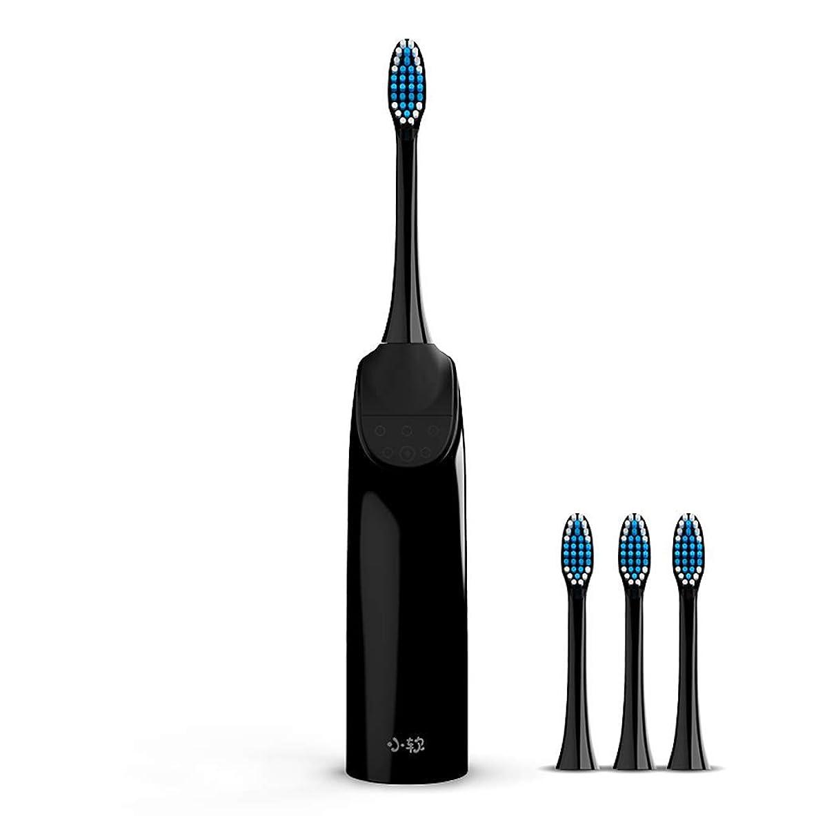ライトニング食事確認してください電動歯ブラシ大人用充電式ソニック歯ブラシ自動歯ブラシ柔らかい毛人格家庭用歯ブラシ(カラー:ブラック、サイズ:4本のブラシヘッド)