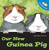 Let's Take Care of Our New Guinea Pig (Let's Take Care of Books)