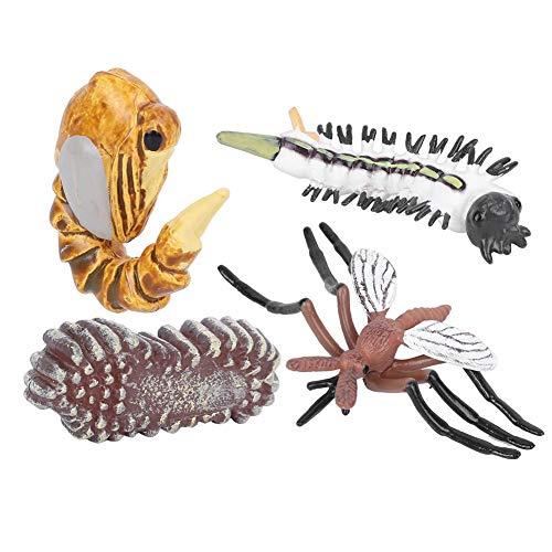 Modelo de etapa de crecimiento de mosquitos, simulación para niños, modelo de insecto en miniatura, juguete, educación temprana, juguete de aprendizaje de ciencias