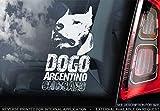 Sticker International Pegatina Dogo Argentino - Adhesivo Coche - Perro Firmar Ventana, Parachoques Pegatina Regalo - V002 - Blanco/Claro - Externo Exterior Estampado, 195x100mm
