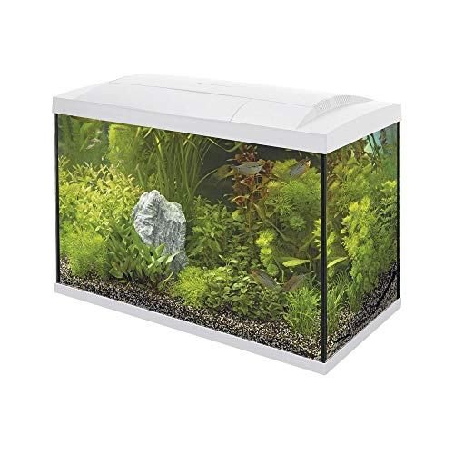 SuperFish Aquarium Start 70 Tropical - 58 x 30 x 45 cm - 70 L - Wit