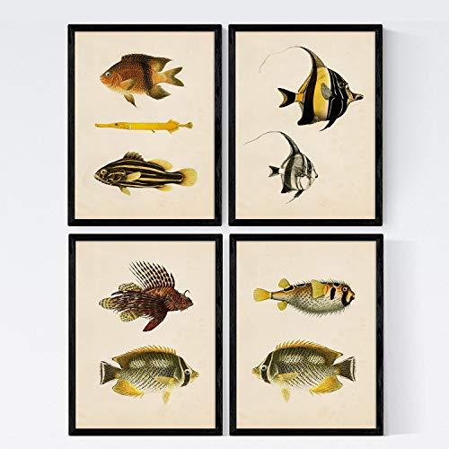 Set van 4 vellen vis vintage kleurrijk effect. Java. Collage van 9 verschillende vissen in A4-formaat, vintage achtergrond oud papier posterpapier 250 gr hoge kwaliteit