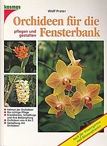 Orchideen für die Fensterbank