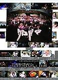 ツアードキュメンタリーDVD単独見世物公演ツアー 14-需要-の【大罪】と【美徳】[DVD]