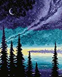 KOSE Paint by Numbers for Adults Beginner & Kids, DIY Oil Painting Kit on Canvas with Paintbrushes and Acrylic Pigment, Arts Craft for Home Wall Decor- Night Lake 16'W X 20'L
