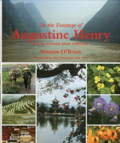 In the Footsteps of Augustine Henry: And His Chinese Plant Collectors