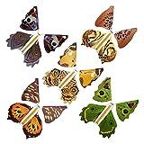 Bumen 10 Piezas de Hada mágica Mariposa voladora Banda de Goma Power Butterfly Clockwork Hada Mariposa Juguete Regalo Sorpresa o Fiest