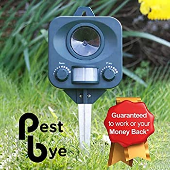 PestBye Répulsif anti-chat Cat Repeller Green