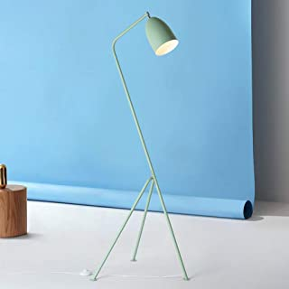 BXZ Lampadaire multicolore nordique moderne simple salon canapé vertical lampadaire E27,Bleu