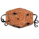 ETHAICO Fillter Cloth for Man and Woman,Spider Web On Orange Background,Reusable Windproof Cloth Half Face Double Protection