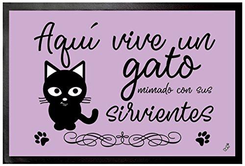 1art1 Gatos - Aquí Vive Un Gato Mimado con Sus Sirvientes Felpudo Alfombra (60 x 40cm)