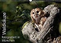 Waldkaeuze, fotografiert in Muenchen (Wandkalender 2022 DIN A3 quer): Bilder von Waldkaeuzen, aufgenommen in Park- und Gruenanlagen in und um Muenchen (Monatskalender, 14 Seiten )