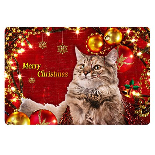 AFPANQZ Merry Christmas Cat Doormat Red Floor Mat Home Decoration Kitchen Mat Nonslip Bathmat for Front Sink or Bathtub Aea Mats Gifts