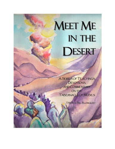 Meet Me in the Desert (English Edition)