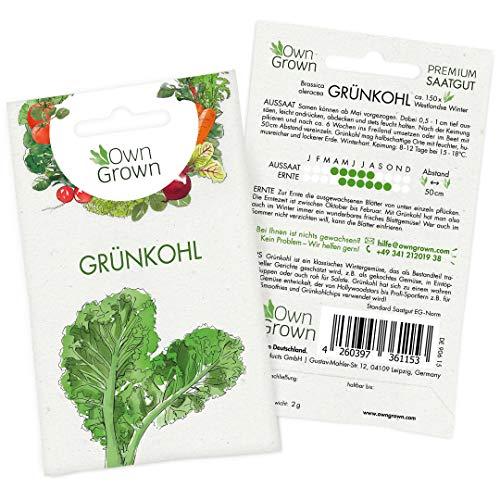 OwnGrown Premium Grünkohl Samen (Brassica oleracea), Grünkohlsamen winterhart, Grünkohl Saatgut für rund 150 Pflanzen