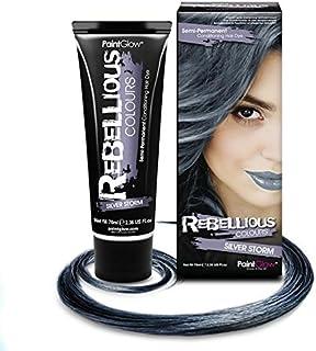 Paintglow - Rebellious Colours - Tinte de Pelo Semi-Permanente 70 ml (Silver Storm) - 1 unidad