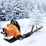 42.7Cc Air-Cooled Two-Stroke Hair Dryer, Gropyong_Shop New Hair Dryer, Hand-Held 2-Stroke Gasoline Backpack Leaf Blower for Blowing Snow Debris + Wiring Harness, Horizontal Bar Snow Blower