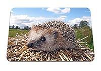 26cmx21cm マウスパッド (ハリネズミ草乾燥した枝銃口) パターンカスタムの マウスパッド