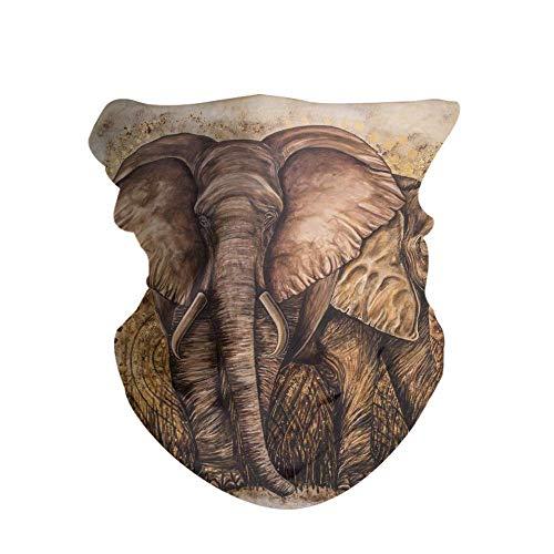 HAOZI 2 piezas 16 en 1 tocado para hombres y mujeres, yoga, deportes, viajes, entrenamiento, diademas anchas, polaina, bandana, pasamontañas, turbante de pelo, bufanda, color Arte de elefante salvaje, tamaño 50 CM x 25 CM
